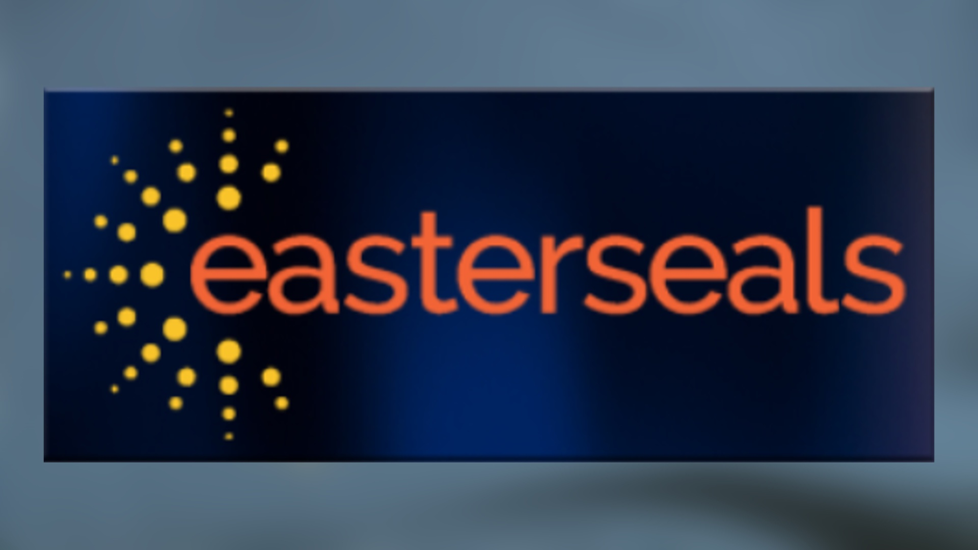 Easter seals new logo_1522789888441.jpg
