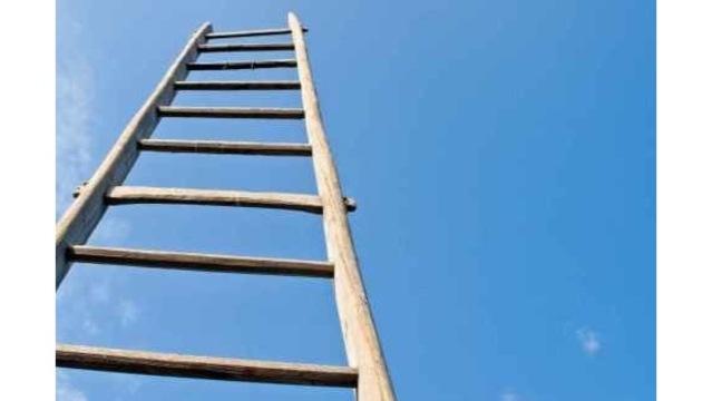 ladders_1545584003776.jpg