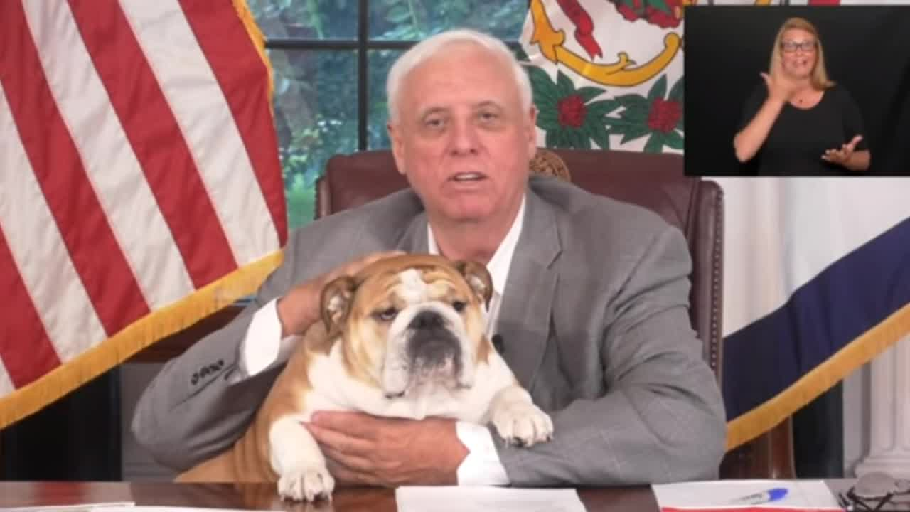 """Do It For Babydog """"Save A Life Change Your Life"""" WV Vaccine Lottery Named"""